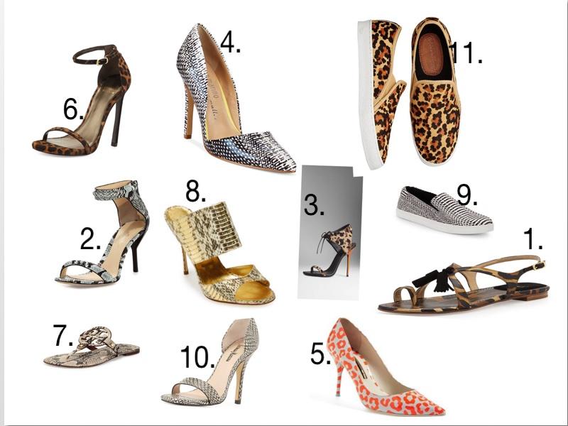 Shoe Jungle
